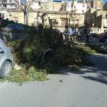 Agrigento, cade ramo di un albero e finisce su scooter: nessun ferito