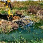 Un nuovo disastro ambientale colpisce San Leone: l'allarme di Mareamico – VIDEO
