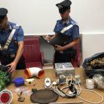 Agrigento, Marijuana coltivata sul terrazzo di casa arresto convalidato per 25enne