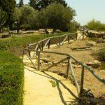 Un nuovo tassello per la Valle dei Templi: apre il giardino mediterraneo di Villa Aurea con un nuovo percorso tra i resti di una necropoli