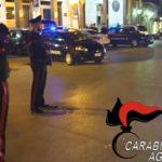 Porto Empedocle, cane ucciso da un colpo di pistola: al via le indagini