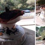 Agrigento, vandali ancora in azione: distrutti vasi al Viale della Vittoria
