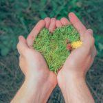 Sostenibilità ambientale, nuove risorse ai Comuni siciliani per i piani energetici
