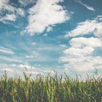 Agrigento, cielo sereno o poco nuvoloso: temperature in rialzo, ecco le previsioni dei prossimi giorni