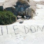 """Gesto vandalico a """"Punta Bianca"""", Firetto: """"imbrattata da qualche imbecille, ci costituiremo parte civile"""""""