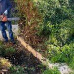 Agrigento, manutenzione delle aree verdi e dei terreni: nuova ordinanza del Sindaco Miccichè