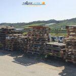 """Pedagne di legno abbandonate a Punta Bianca: """"inciviltà dei cittadini"""" – VIDEO"""