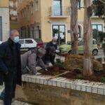 Agrigento, continuano gli interventi di decoro urbano: abbellite le aiuole a Bonamorone