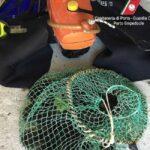 """Operazione """"PHOENIX"""": sequestrati oltre 700 ricci di mare e diversi attrezzi da pesca non conformi"""