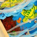 """11 aprile, """"Giornata del mare e della cultura marinara"""""""