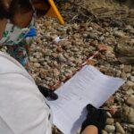 BEACH LITTER 2021: anche quest'anno sono le plastiche a contaminare maggiormente la spiaggia di Maddalusa