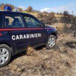 Agrigento, finì con l'auto in un uliveto nella Valle dei Templi: denunciato per guida in stato di ebbrezza